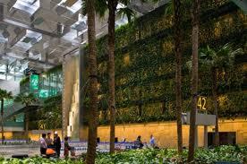 aeropuerto de Changi en Singapur3